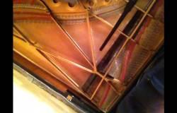 Я и Рогер надругались над роялем за 100 кусков евро Гыыыыы